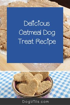 Looking for an easy hypoallergenic dog treat recipe that Spot will gobble up? Try our almond oatmeal cookies! Plus learn more about allergies in dogs! Arbonne Nutrition, Holistic Nutrition, Proper Nutrition, Nutrition Guide, Dog Health Tips, Health And Wellness Quotes, Health And Wellbeing, Dog Treat Recipes, Dog Food Recipes