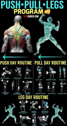 The push/pull/legs split is probably the most efficient workout split there is because all related muscle groups are trained together in the same workout.This means that you get the maximum overlap of movements within the same workout, and the muscle grou Push Workout, Workout Splits, Gym Workout Chart, Gym Workout Tips, Fun Workouts, Push Pull Workout Routine, Best Workout Schedule, Push Pull Legs Workout, Weekly Workouts