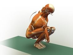 1000 images about yoga binds  twists on pinterest  yoga