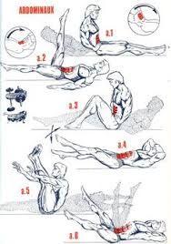 Imagini pentru shoulder musculation