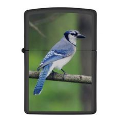 Christian pastor business card diy cyo customize gift idea blue jay zippo lighter nature diy customize sprecial design negle Gallery