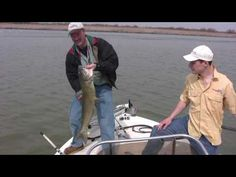 Catfish Fishing - Secrets, Tricks, and Tips to Catching Big Catfish - Part 1 How To Catch Catfish, Big Catfish, Catfish Bait, Catfish Fishing, Fishing 101, Fishing Store, Boy Fishing, Fishing Videos, Fishing Bait