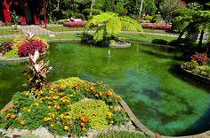 SIARAM :: Jardim Duque da Terceira, Garden in Terceira Island, Azores, Portugal