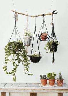 piante d'appartamento Decorazione per piccoli ambienti - 20 idee di arredamento salvaspazio  #ambienti #Arredamento #dappartamento #decorazione #Idee #piante #piccoli #salvaspazio  #pianted'appartamento