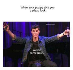 He's my Puppy ❤️