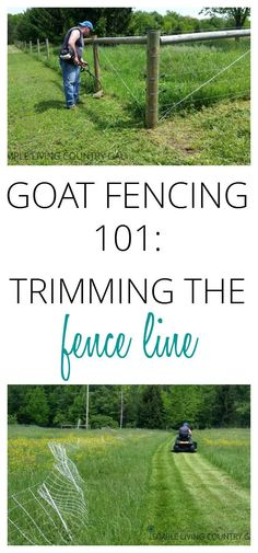 Trimming the fence line is an important chore that needs to be done to ensure your animals stay safe and secure. Keep your animals in and predators out. via @SLcountrygal