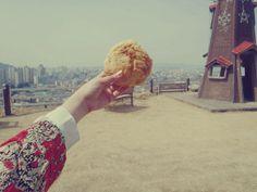 대전 하늘공원 소보로빵