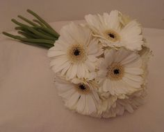 Simple, cheap, seasonal gerbera hand tied bouquet for bride and bridesmaids. Button holes matched. One of the tightest budgets I have ever had to work with, but it stylish, simple and is so effective. Who says bridal flowers have to cost the earth? Gems could be added in the centre of the flowers, or foliages around the edge, but this was just fabulous!