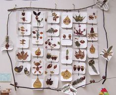 light table tracing/art in the reggio classroom Reggio Emilia, Easy Fall Crafts, Crafts To Make, Crafts For Kids, Diy Crafts, Autumn Activities, Art Activities, Leaf Crafts, Forest School