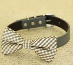 Plaid Champagne dog bow tie collar, Pet wedding accessory, dogs birthday gift