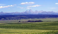 Driggs is the hub of business and services in Teton Valley. It is the gateway to Grand Targhee Resort and the west side of the Teton Mountains. Peaceful Places, Beautiful Places, Driggs Idaho, Teton Mountains, West Yellowstone, Places In America, Mountain Landscape, Lodges, Wyoming