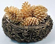 Šišky sú skvelým prírodným materiálom, s ktorým si viete vyrobiť dekorácie na rôzne spôsoby. Skúšali ste už ale šišku vybieliť? Na vašom vianočnom stole vytvoria biele šišky tu najlepšiu...