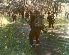 Army Day, Afrika Korps, Defence Force, Cold War, Bradley Mountain, Troops, South Africa, African, Military