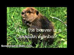 ▶ Canadian Symbols - YouTube