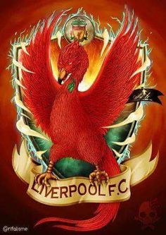 Liverpool Fc, Premier League, Rooster, Animals, Image, Animales, Animaux, Roosters, Animal Memes
