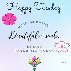 good morning Tuesday Quotes, Images and greetings Collection Tuesday Quotes Good Morning, Happy Tuesday Quotes, Morning Greetings Quotes, Good Morning Everyone, Good Morning Good Night, Good Morning Wishes, Tuesday Humor, Morning Memes, Happy Tuesday Images