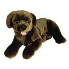 Labrador Stuffed Toy : Paws Point Pet Deli and Boutique, Paws Point is a…
