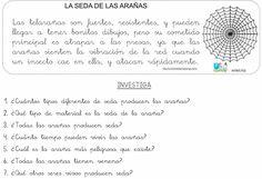 FICHALA SEDA DE LAS ARAÑAS