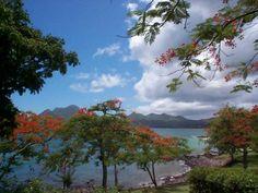 -- Martinique  --