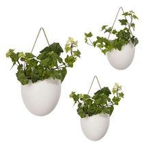 It's the perfect time of year to bring the outdoors in - and these planters with a tan strap will ensure you do it in style! From $24 over at For Keeps >>> http://ift.tt/1OJMACC #plants #planter #plantlife #walldecor #homedecor #forkeepsstore