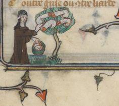 Le Roman de la Rose, c. 1301 -1400, Français 25526, f 106v, Bibliothèque nationale de France.