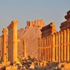 Site of Palmyra, Syria 11/03/2011 © Silvan Rehfeld