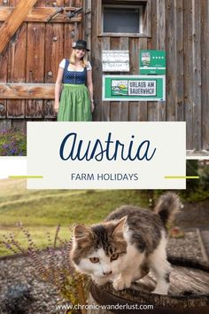 A little break in the countryside always does you good. Read my tips for a cosy holiday on a farm in Losenstein and great tips for excursions. #Travel #Holidays #Austria #UpperAustria #Ennstal #FarmHolidays Farm Holidays, Whitewater Rafting, Do Your Best, Scuba Diving, Austria, Adventure Travel, Cosy, Countryside, Shark
