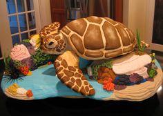 - sea turtle in reef