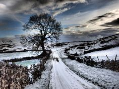 "pagewoman: "" Eden Valley, Cumbria, England by Suzanne McNally """