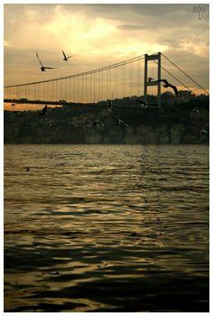 istanbul the Bosphorus George Washington Bridge, Istanbul, Frames, In This Moment, Explore, Frame, Exploring