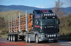 SCANIA timber transport