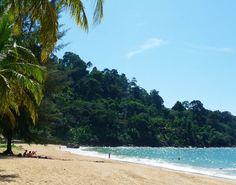 Urwald trifft auf Ozean! #taipan_thailand #thailand #khaolak #khaolakparadiseresort