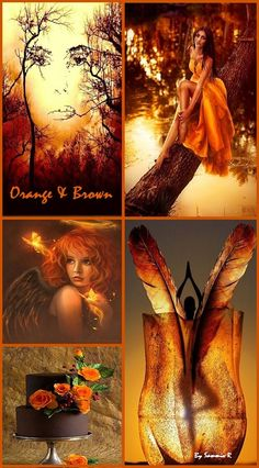 Orange and Brown By Sammie R