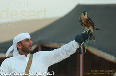 Desert is the destination we know better, therefore we recommend the authentic show hunter falcon.   #visit #caravanseri the venue of #arabian #dinner and #safari then #enjoy the best dining and live shows on open air at desert.   Book #now: tour-dubai.com 800TOURDUBAi 043368407 #travel #holiday #Dubai #buffet #international #dance #show