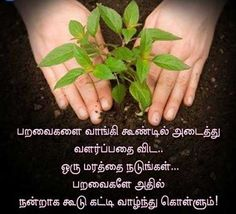 Life Coach Quotes, Real Life Quotes, Reality Quotes, True Quotes, Tamil Motivational Quotes, Tamil Love Quotes, Wiser Quotes, Bible Words Images, Good Morning Image Quotes