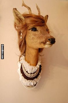Honey, sure you can put your deer head in the dining room ;) Isn't she handsome?