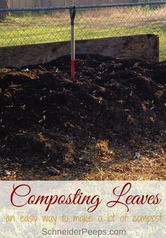 Every fall nature gives us an abundance of leaf litter that is perfect for composting in winter. Composting leaves with this two ingredient method is an easy way to make a lot of compost for the spring garden. Hanging Succulents, Hanging Planters, Spring Garden, Winter Garden, Organic Gardening, Gardening Tips, Gardening Books, Chicken Garden, Home Vegetable Garden