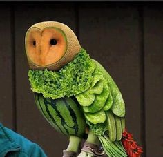 Look at this vegetable owl! It seems like a real one! | INO Fruit ...