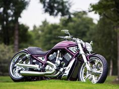 Custom Harley-Davidson...love this bike, especially the color, need to get me one.