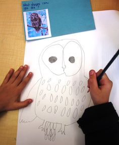 """I have started a big drawing unit with my cute grade one students using the method outlined in this wonderful book by Mona Brookes titled """"Drawing With Children"""". If you are planning to…"""