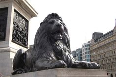 One of Sir Edwin Landseer's four bronze lions at the foot of Nelson's Column in Trafalgar Square