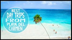 Guide to independent & tours from city center & resorts for the best day trips from Playa del Carmen. The Yucatan is full of day trips from Playa del Carmen