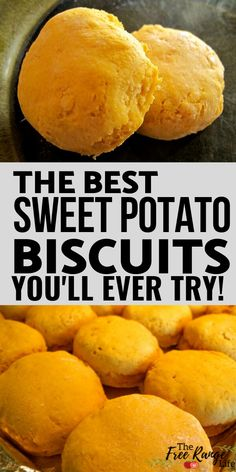 The BEST Sweet Potato Biscuits - - Fluffy homemade biscuits full of sweet potato puree! Sweet Potato Rolls, Sweet Potato Biscuits, Sweet Potato Curry, Sweet Potato Pancakes, Sweet Potato Cookies, Buttermilk Biscuits, Sweet Potato Recipes Healthy, Recipes For Sweet Potatoes, Courge Spaghetti