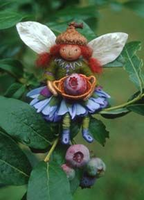 Sally Mavor Bluberry Fairy