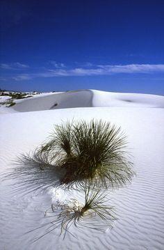 Désert de White Sands, Nouveau Mexique, 1985. Lucien Clergue.