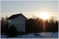 Magic januari afternoon