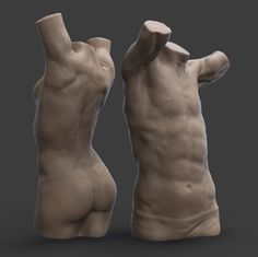 Scaalps anatomy course with Scott Eaton