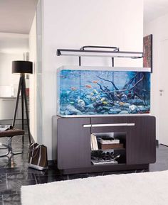 diy aquarium furniture stands are an integral part of every aquatic system. The aquarium stand should be sturdy so that it can bear the weight of a filled a Fish Tank Terrarium, Aquarium Terrarium, Home Aquarium, Aquarium Design, Planted Aquarium, Terrariums, Aquarium Ideas, Aquarium Stand, Marine Aquarium