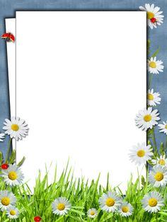 Flower Background Images, Frame Background, Flower Backgrounds, Paper Background, Boarder Designs, Frame Border Design, Page Borders Design, Picture Borders, Flower Picture Frames