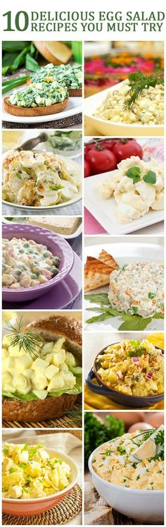 Do you like eggs? Have you ever had them in ways different from usual? This post deals with those delicious egg salad recipes which even your kids would love! Want to check out them? Read on!